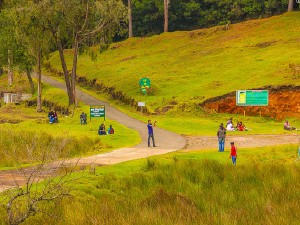 Best Tourist Attractions In Kodaikanal In Tamil Nadu