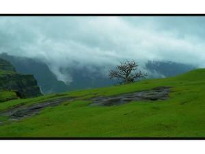 Top 5 Monsoon Destinations In Andhra Pradesh