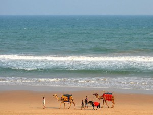 Places To Visit In Gopalpur