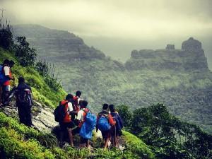 Trek To Bhimashankar Maharashtra