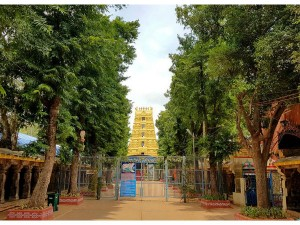 Hours Srisailam Tirupati Darshan Andhra Pradesh