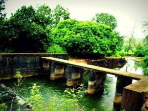 Apsarakonda Near Honnavar Karnataka