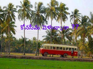 Konaseema Dream Destination