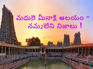 A Tour The Meenakshi Temple Madurai
