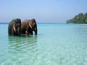 Best Places Visit Andaman Nicobar Islands