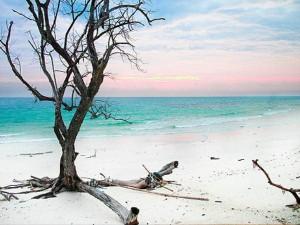 One The Seven Union Territories India Andaman Nicobar Isla