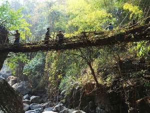 Wonders India