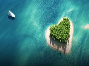 Top 5 Kerala Honeymoon Places A Romantic Escape