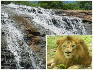 Best Popular Weekend Getaways Visit From Bangalore
