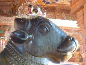 The Story About Guptakashi Hindu Shrine Uttarakhand