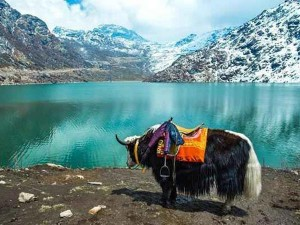 Top 10 Attractions Places Visit Sikkim