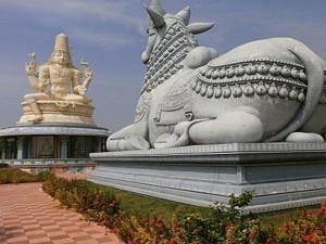 Sirichelma Mallanna Temple Adilabad Timings History How R