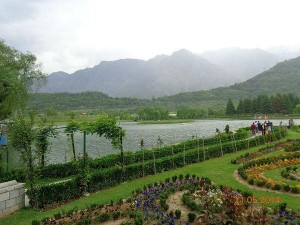 Nehru Botanical Garden In Srinagar Attractions And How To Reach