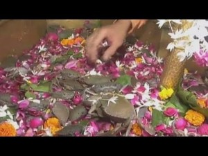 Devotees Offer Live Crabs To Lord Shiva In Surat History Timings How Reach