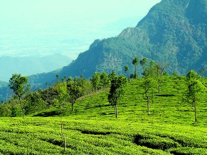 Best Places To Visit In March In South India