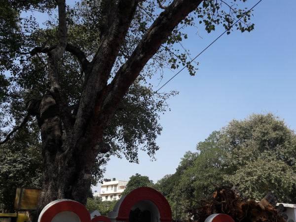 Mysterious Temple Bangalore Karanji Anjaneyaswamy Temple